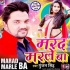 Bhatar Badi Marle Ba Maar Mp3 Song